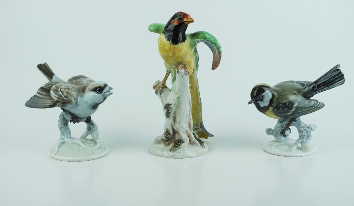 3 Pássaros
