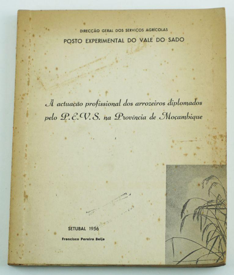 Álbum (arroz) Província de Moçambique