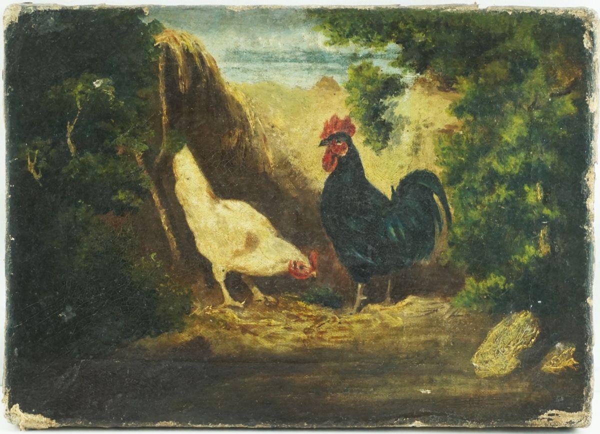 Galináceos