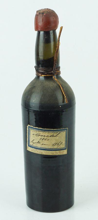 Moscatel 1860