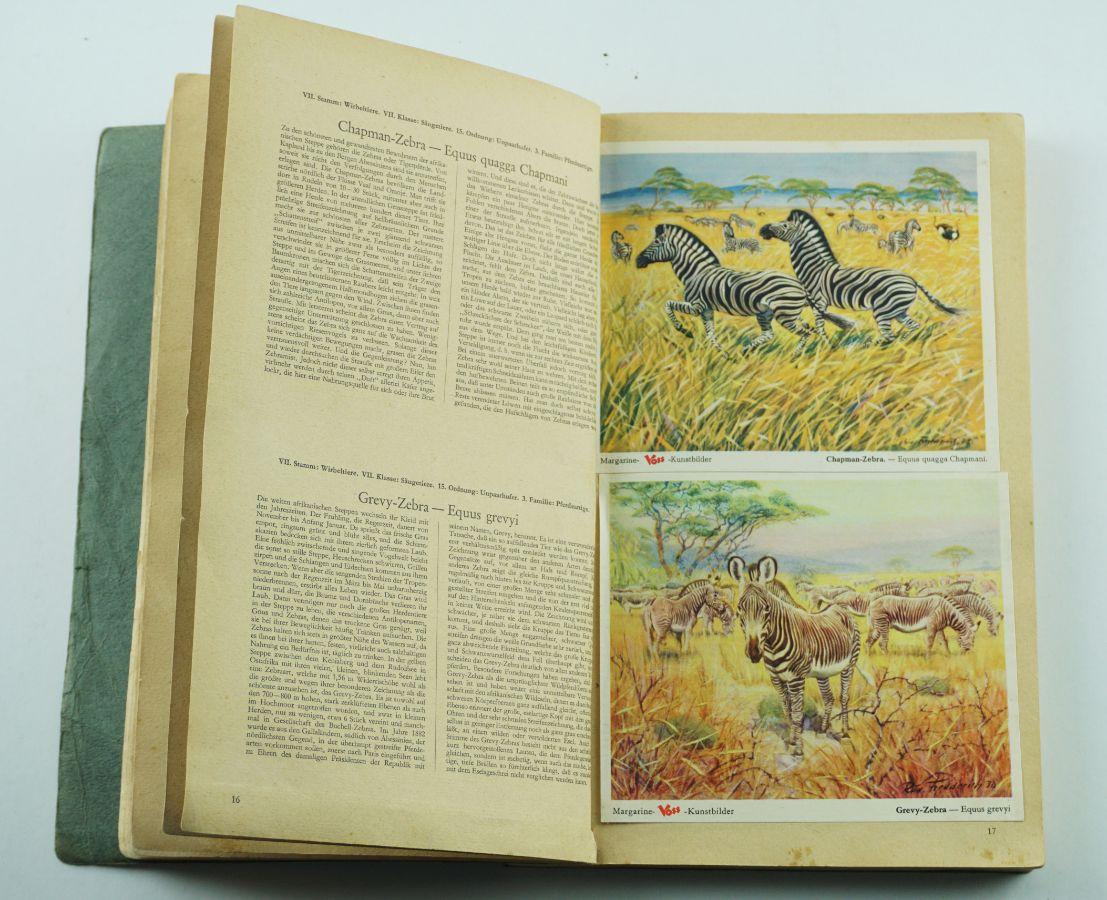 Coleção de Cromos Alemanha editada em 1952