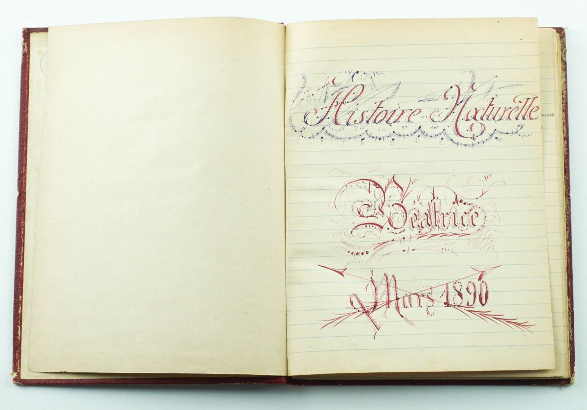 Manuscrito - História Natural (1890)
