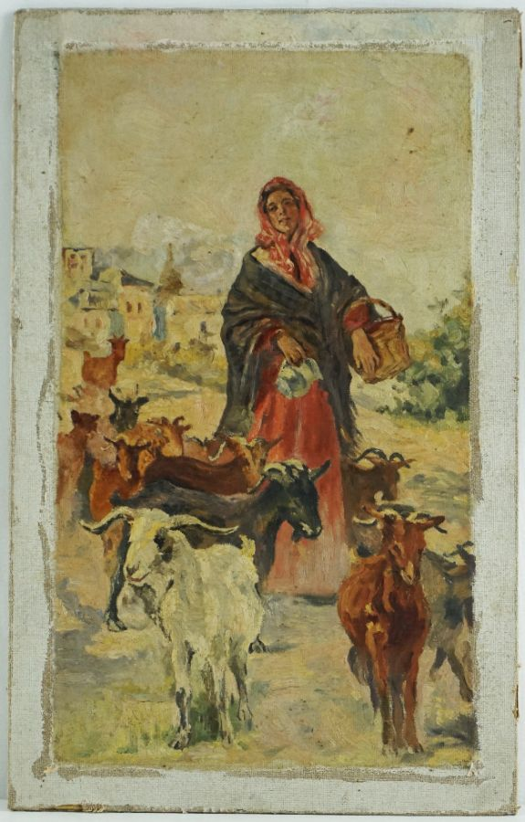 Saloia com cabras