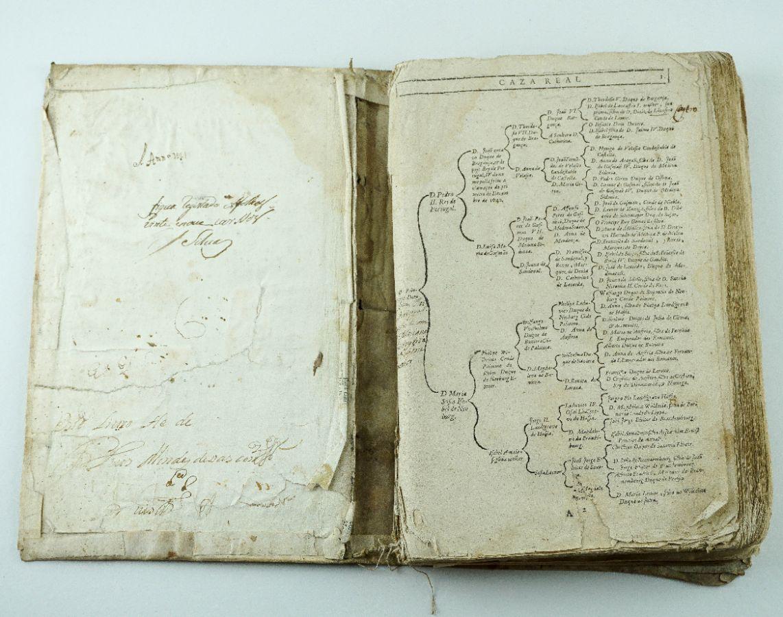 Memorias Historicas e Genealogicas dos Grandes de Portugal