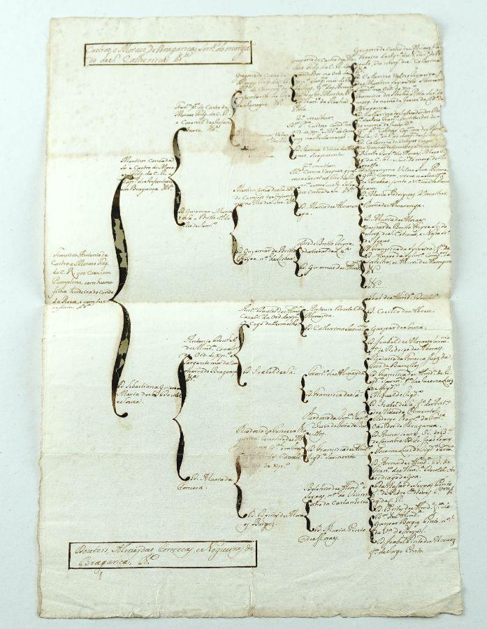 Arvore Genealogica Manuscrita do Sec XVIII familia Castros Morais de Bragança