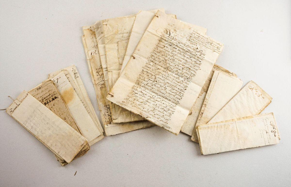Manuscritos de concessões de terra, rendas, compras de quintas na zona do Douro, sec XVII e XVIII