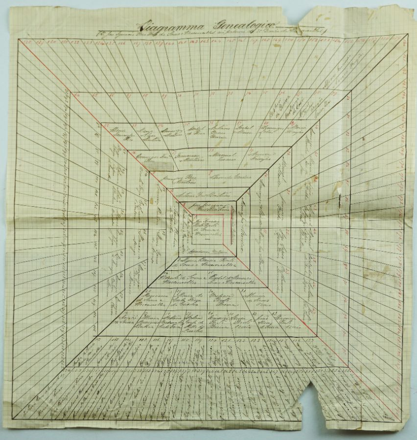Diagrama Genealógico de José Inácio Pais Pinto de Sousa e Vasconcelos