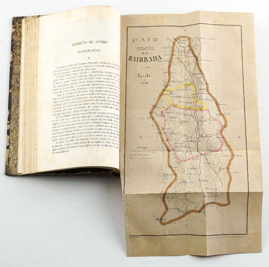 Memória sobre os Processos de Vinificação (1867-1868)