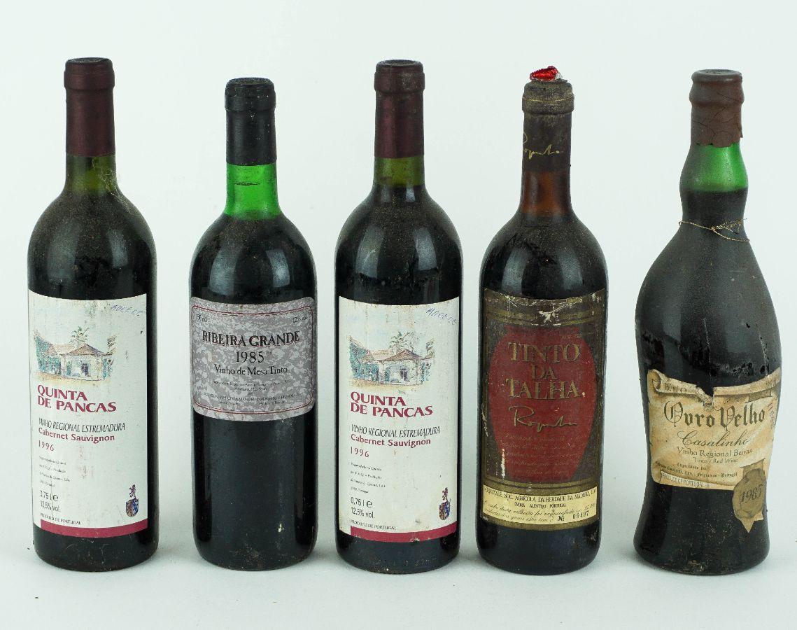 10 Garrafas de Vinho Tinto