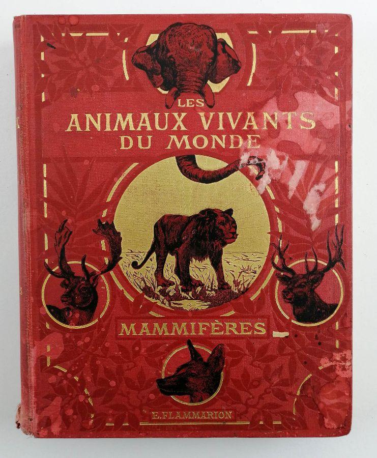 Les Animaux Vivants Du Monde (…) Les Mammifères