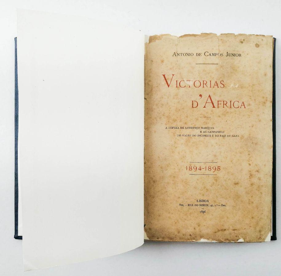Campanhas de Moçambique (1894-1895)