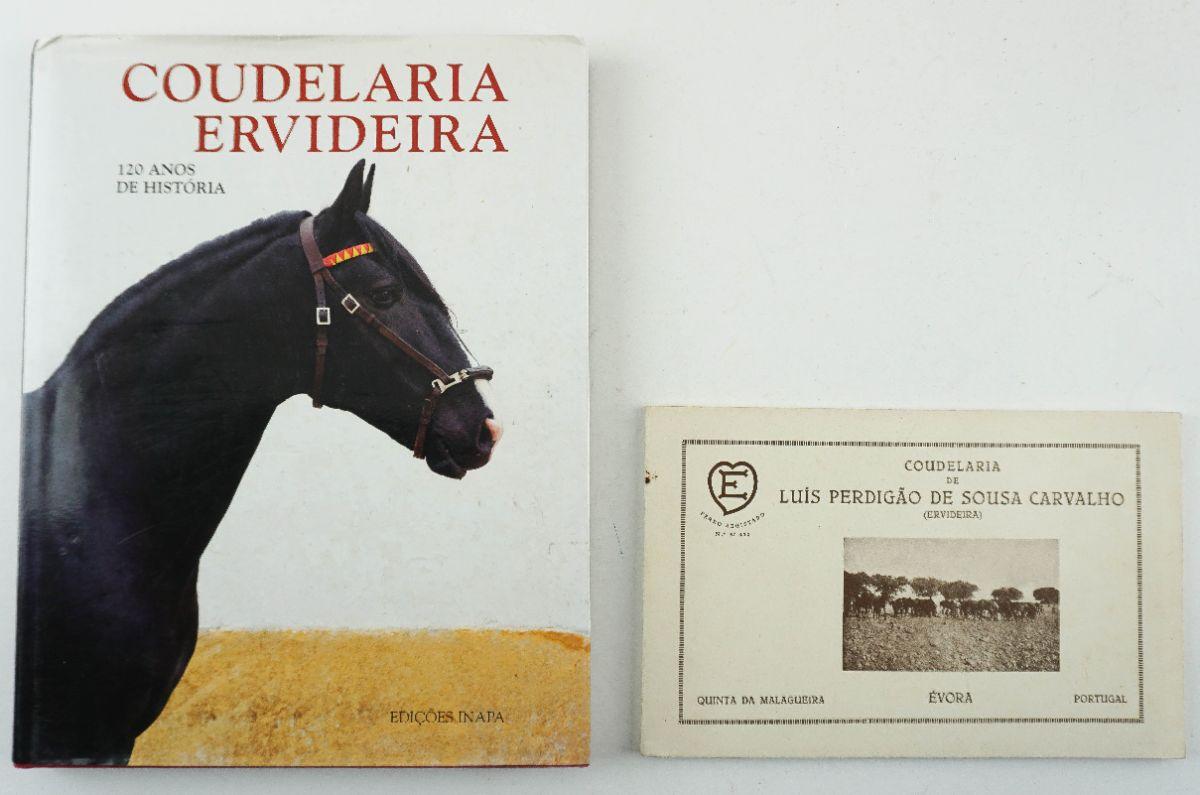 Coudelaria e Catálogo da mesma de 1939