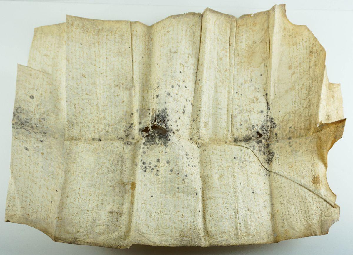 Pergaminho de emprazamento da Quinta de Arois Séc. XIV / XV