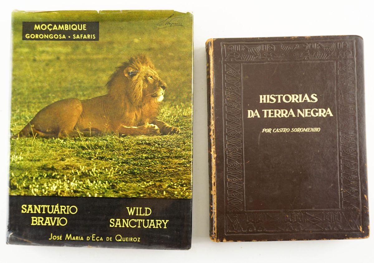 Histórias da Terra Negra  e Moçambique