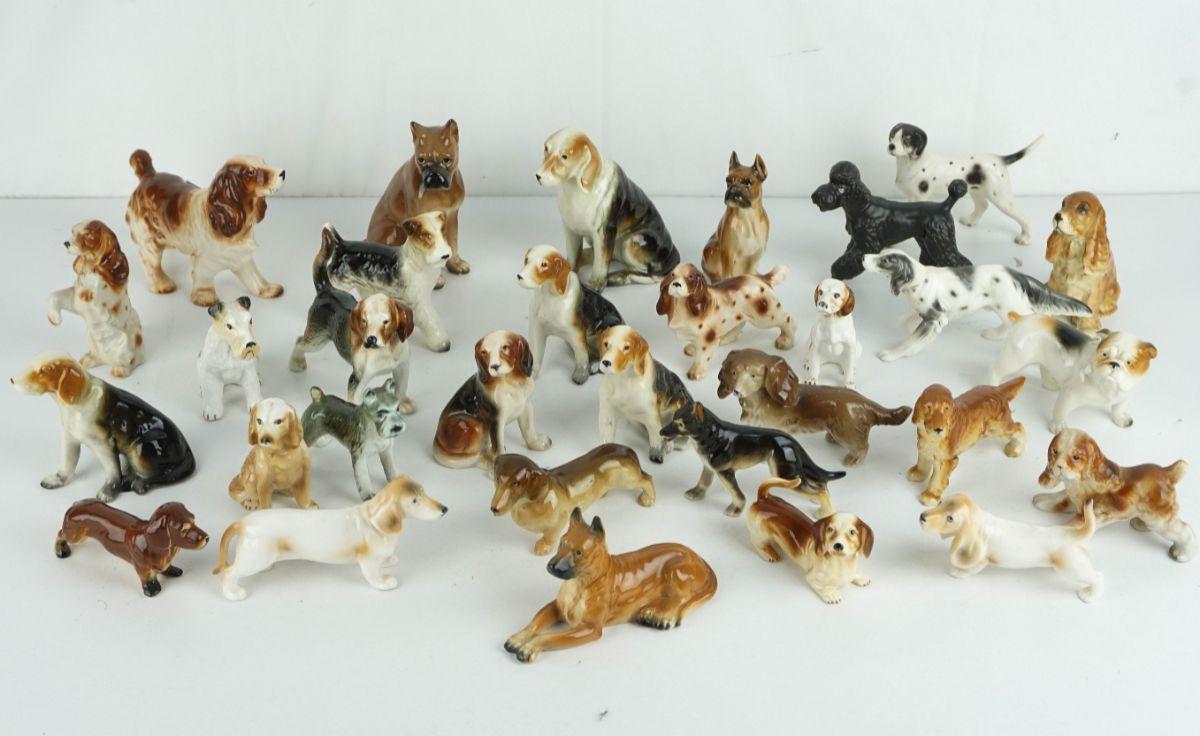 Conjunto de 30 Cães