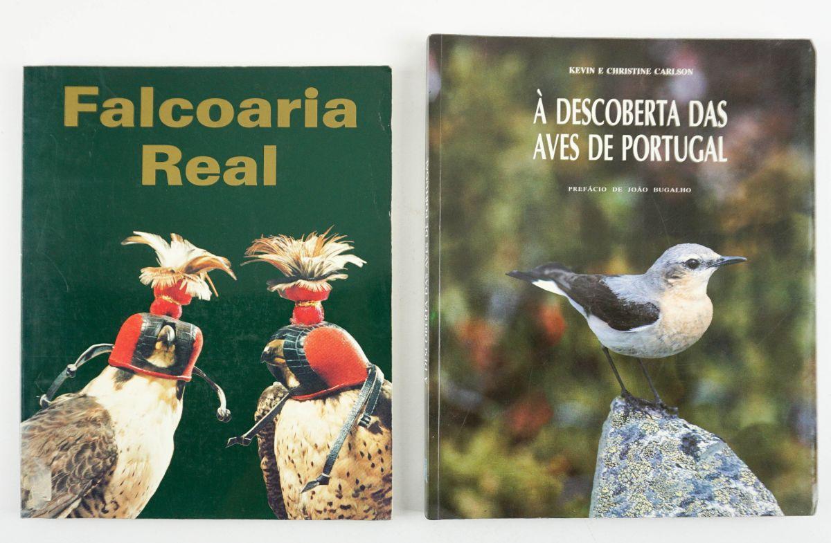 Falcoaria Real