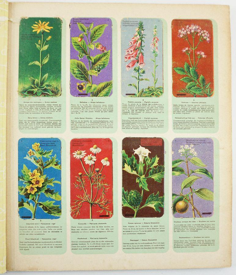 Album Botanica - Chocolates Côte d´Or