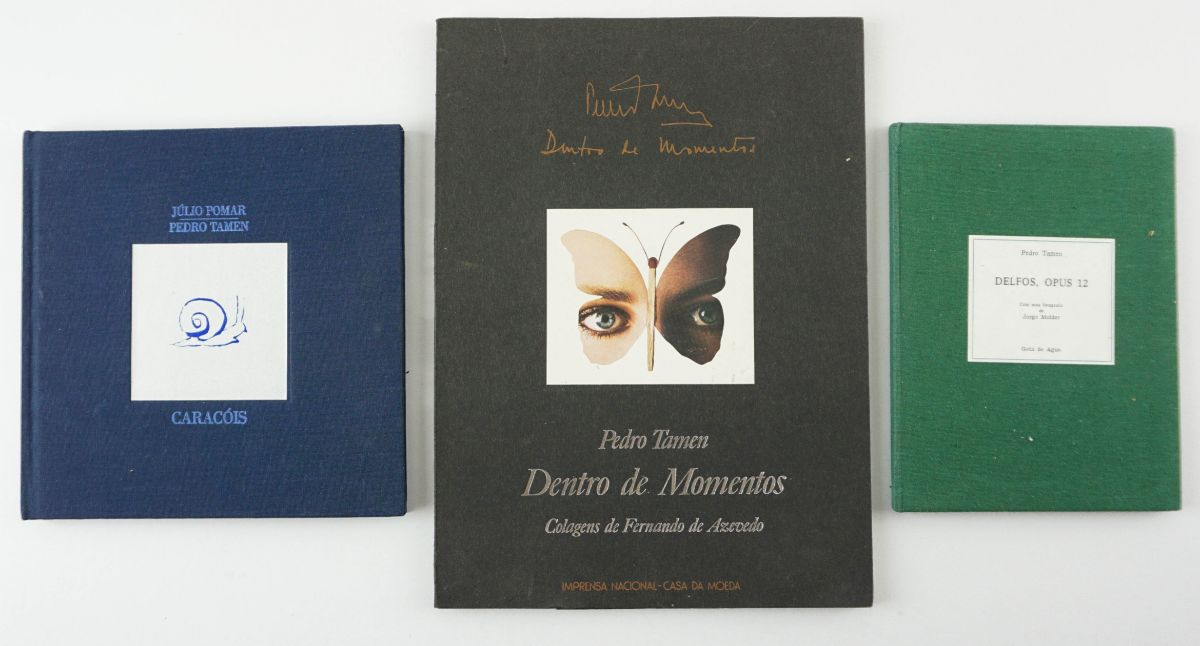 Pedro Támen – livros de artista
