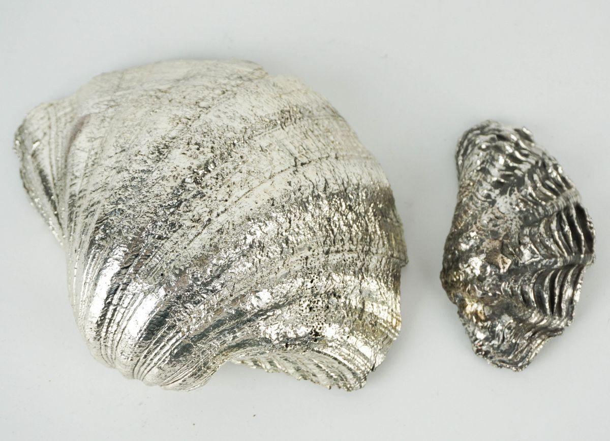 2 Conchas